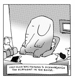 filepicker_UQ3t89rTriEzDvSsUSHg_elephant_in_the_room